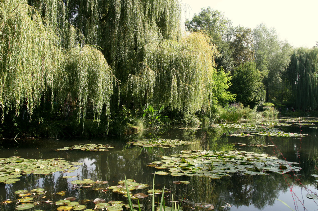 Giverny today
